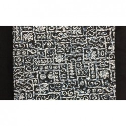 Silk Taffeta Printed TP313